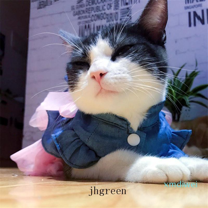Cane Autunno / accessori per abbigliamento invernale del gatto dell'animale domestico Dress Teddy principessa Dress Nuovo stile Cane Gonna Wedding Rosa Lace Pet