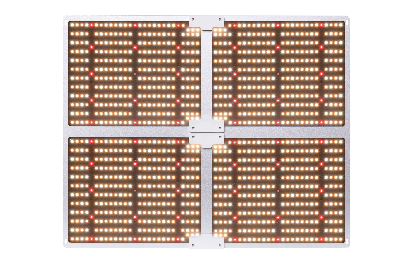 Dimmer Full Spectrum LED Grow Lights 4000W 480W 1212 Quantum Samsung 301b 660nm Bright Latitudine Alimentatore Promuove la crescita delle piante Risultati