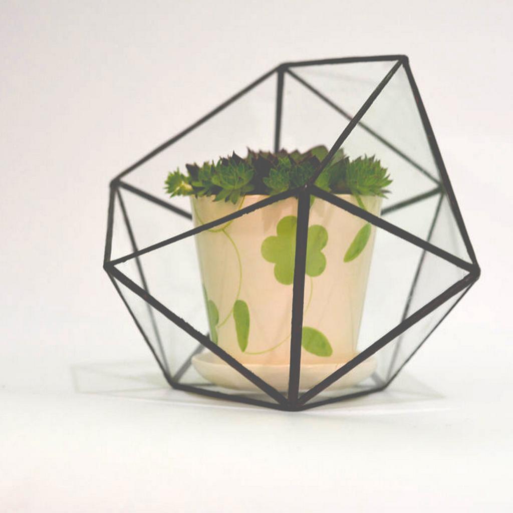 2 peças de vidro claro Geometric Terrário Box Planta Tabletop Planter Indoor