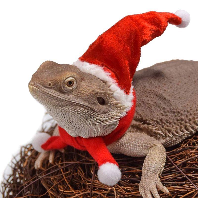 Sakallı Ejder Lizard Santa Hat + Eşarp + Traction Halat Noel Yılbaşı Kostüm Seti U90A