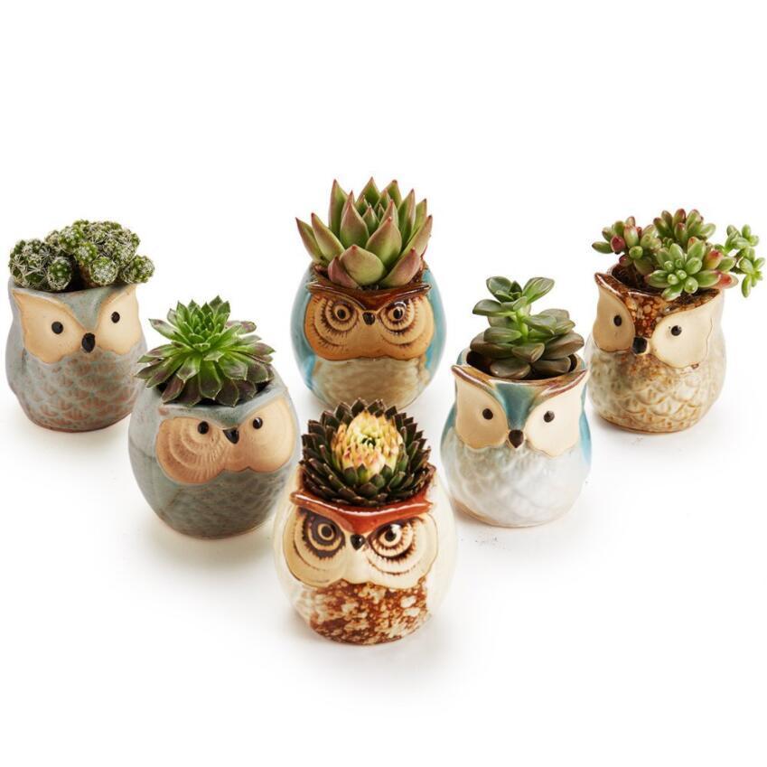 Ceramica creativa figura del gufo Mini POT di fiore per Animal pianta carnosa Succulente Stile Planter giardino della casa decorazione dell'ufficio 6 Stile DHL