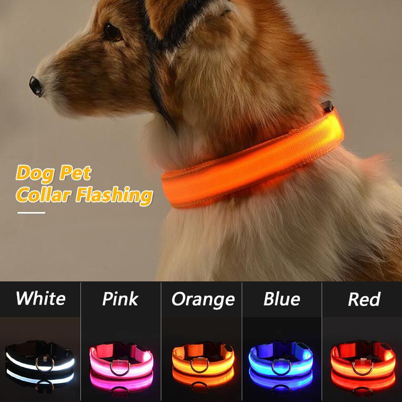 USB aufladbare LED-Hundehundehalsband Flashing Luminous Sicherheits-Licht Up Nylon Hundehalsband Anti-verlorene Haustier-Halskette Welpen Bänder