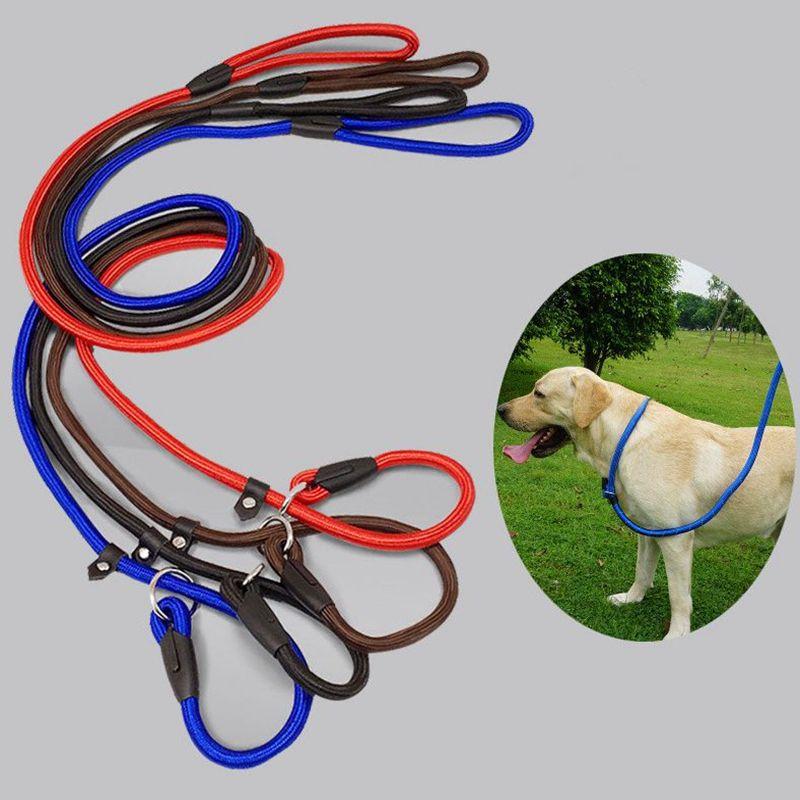 1.4m cão animal de estimação filhote de cachorro de nylon corda treinamento trela deslizante chumbo alça de gola animais animais corda suprimentos acessórios kka8077