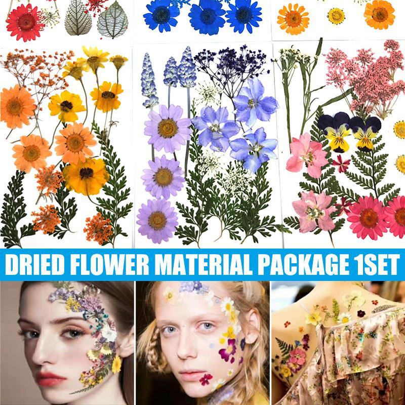 Secado de maquillaje de ojos pétalo Flores pegatinas decorativas Maquillaje de novia floral Decoraciones colección del regalo del arte DIY envío de la gota
