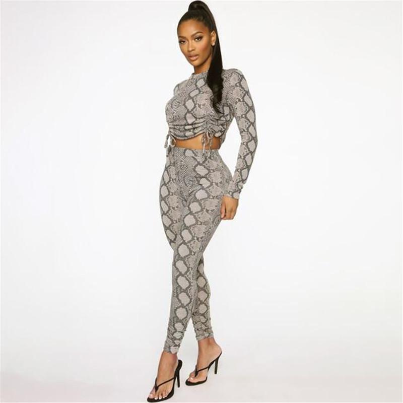 Yılan derisi Desen 2adet Suits Yeni Casual O-boyun Uzun Kollu Kısa Üst + Elastik Bel Pantolon Kostüm Kadın İlkbahar Sonbahar ayarlar