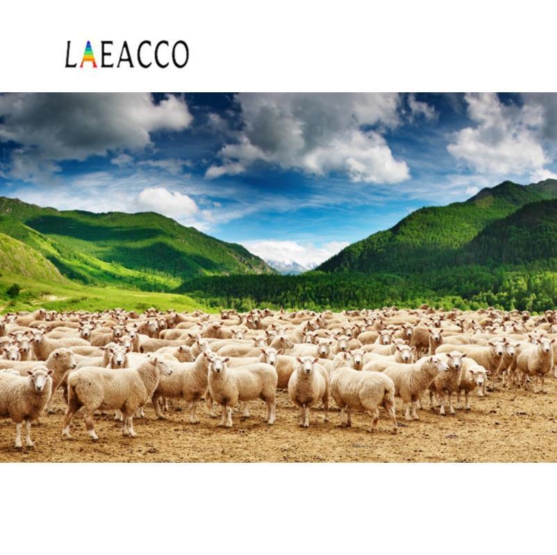 Laeacco Fotografia Fondali verde Pascolo Pecora Caprino Mountain Farm Blue Sky nuvoloso Scenic photo Sfondo per il Photo Studio
