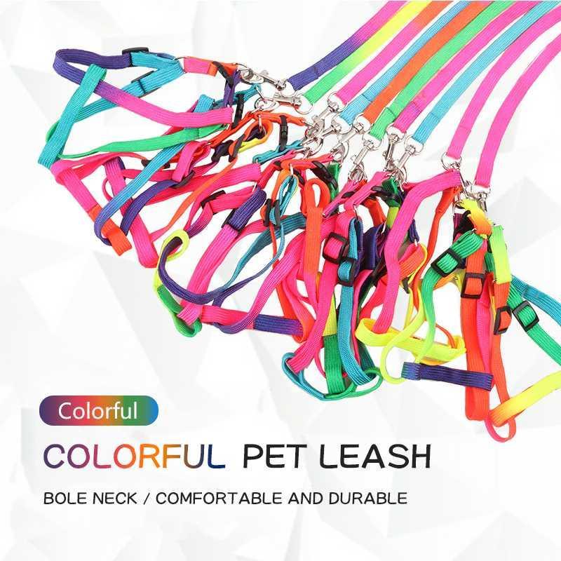 Einstellbare Regenbogen Hundeleine Harness Nylon Bunte Leinen Outdoor-Sicherheit Gehen Zugseil für Hunde Bleigurt Pet Supplies