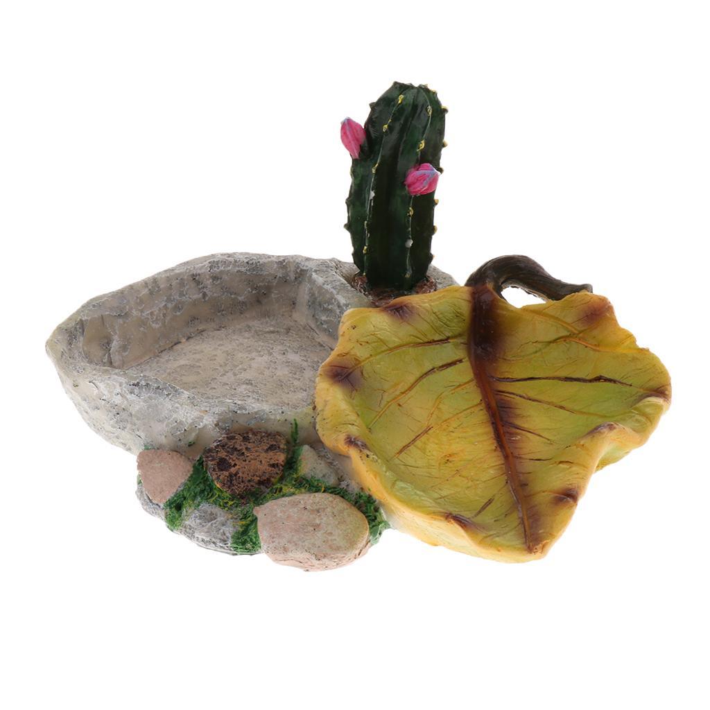 Piatto Rettile Testuggine d'acqua cibo Vassoio Bowl anfibi Gecko serpenti Lucertola Snake Plate Ciotola Strumenti