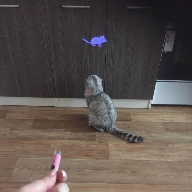 Amazingly Laser Cat Toy Creative and Funny Pet Cat Toys LED Pointer Light Pen with Bright Animation Mouse Laser Chat
