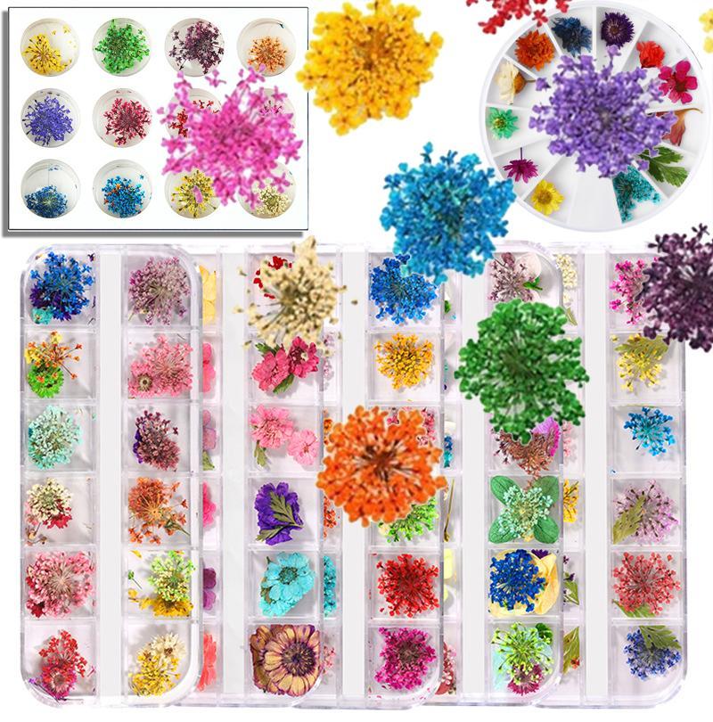 3D Gedroogde Bloem 24/36 Gedroogde bloemen Blad Nail Decoratie Tool Natural Floral Sticker 3D Dry Beauty Decals Nail Art False Teen Tips Manicure
