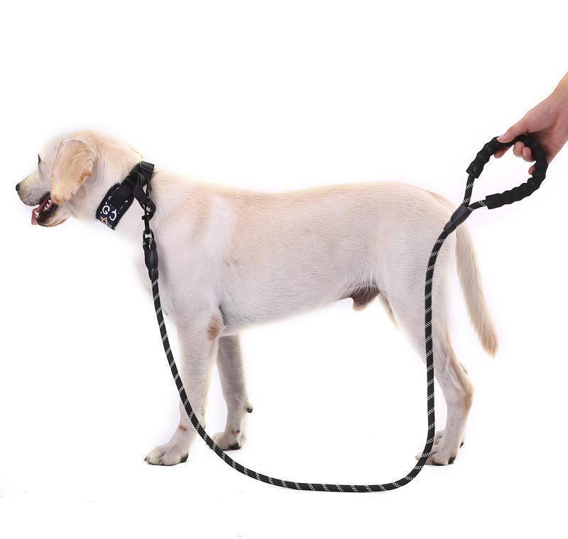 애완 동물 용품 반사 가벼운 여러 가지 빛깔의 부드러운 둥근 로프 개 가죽 끈 체인 벨트 컴포트 BBYKPN BDESPORTS