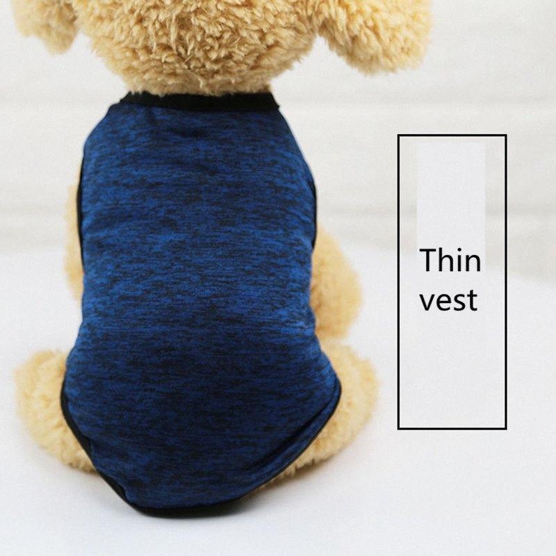 2019 classici vestiti dell'animale domestico per la sezione sottile piccolo cane del cane della ragazza di estate del ragazzo governare Grey accessori t-shirt arancione AprT3 Naux #