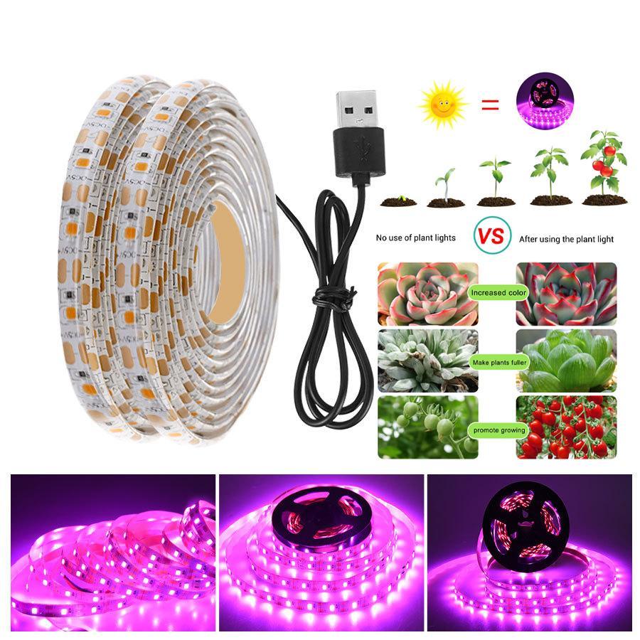 Cultivez des lumières USB à spectre USB LED Strip lumières 60ELDS / M 2835 Chip Fiolampy Imperméable pour la serre intérieure Plante hydroponique