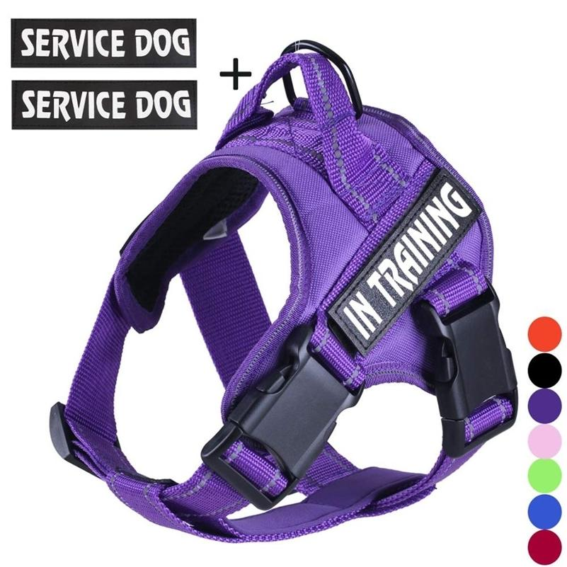FML Pet No Pull жгут CAT с отражающими ремнями Регулируемые дышащие сервисные собаки жилет с ручкой легкий контроль в обучении LJ201225