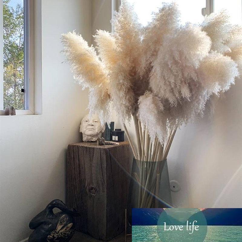 3PCS 55CM80CM الأبيض الطبيعي ريد المجفف حفل كبير زهرة السهوب العشب باقة الزفاف زهرة الديكور الحديثة الديكور المنزلي