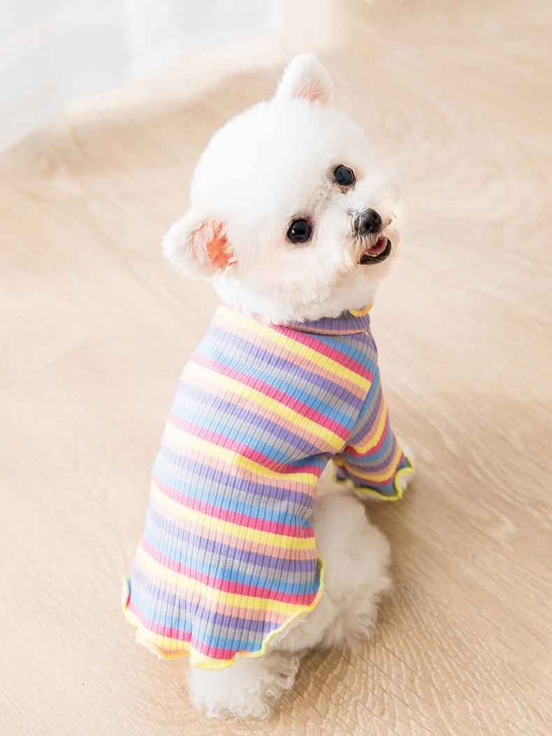 O arco-íris Roupa inferior Brasão Milk Cat cão pequeno Teddy Pet Urso Outono e Inverno roupas finas EKSL Quente