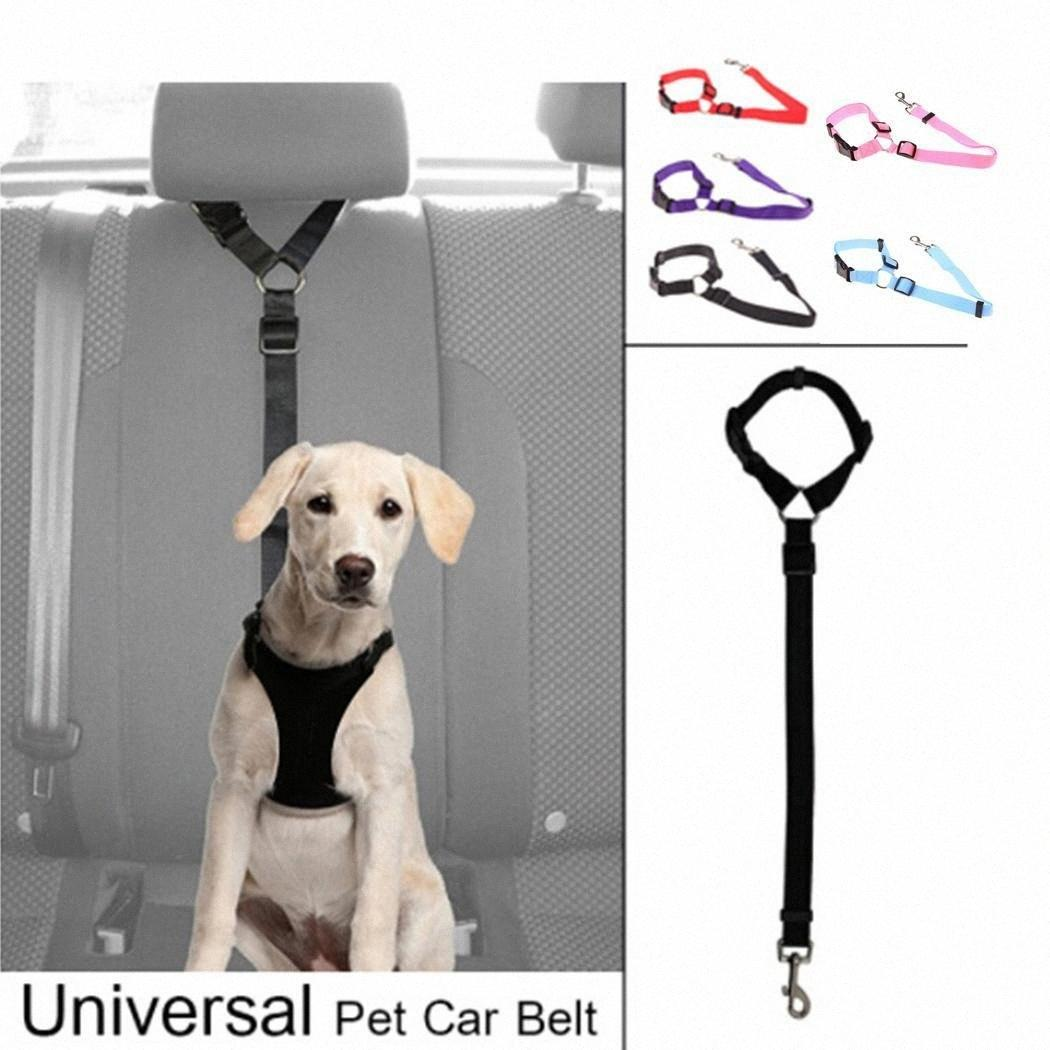 Perro transpirable ajustable Conductores de pecho correas sólidas Suministros perro mascota Chaleco Arnés Cinturón de tracción All Seasons BzTb #
