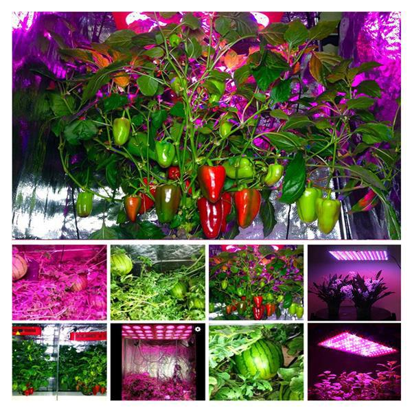 Hot selling 1200W High intensity LED Dual Chips 380-730nm Full Light Spectrum LED Plant Growth Lamp White Low heat free delivery