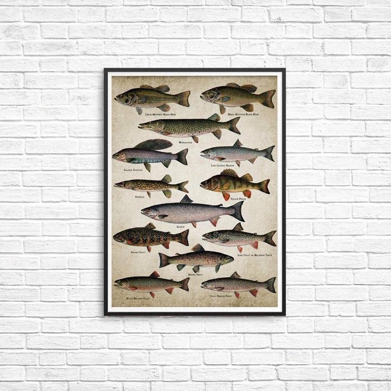 Olta Wall Art Canvas Posterler Balık Ev Oda Dekorasyon CC2g için # Tatlısu Balık Duvar Resmi Boyama Of Baskılar Irkları Balıkçılık