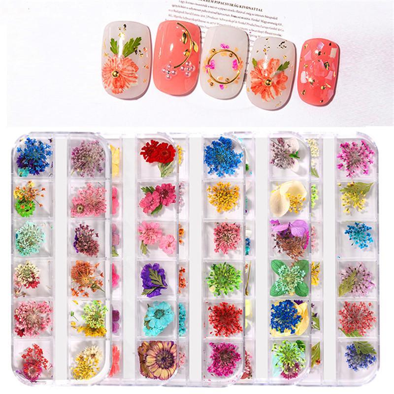 1 boîte 3D fleurs séchées Nail décoration florale naturel autocollant mixte sec de fleur bricolage Nail Art Stickers Bijoux Gel UV Manucure polonais