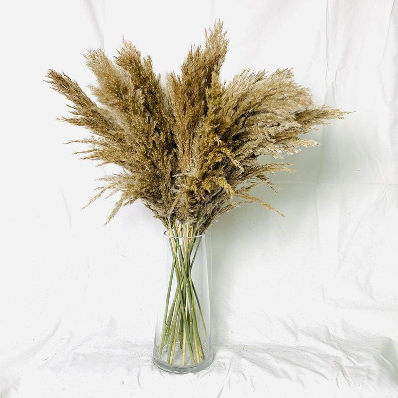 Pampas grama pensador secado pampas grama buquê decoração decoração secada decoração de natal decorativo decorativo flores artificiais fludily reed