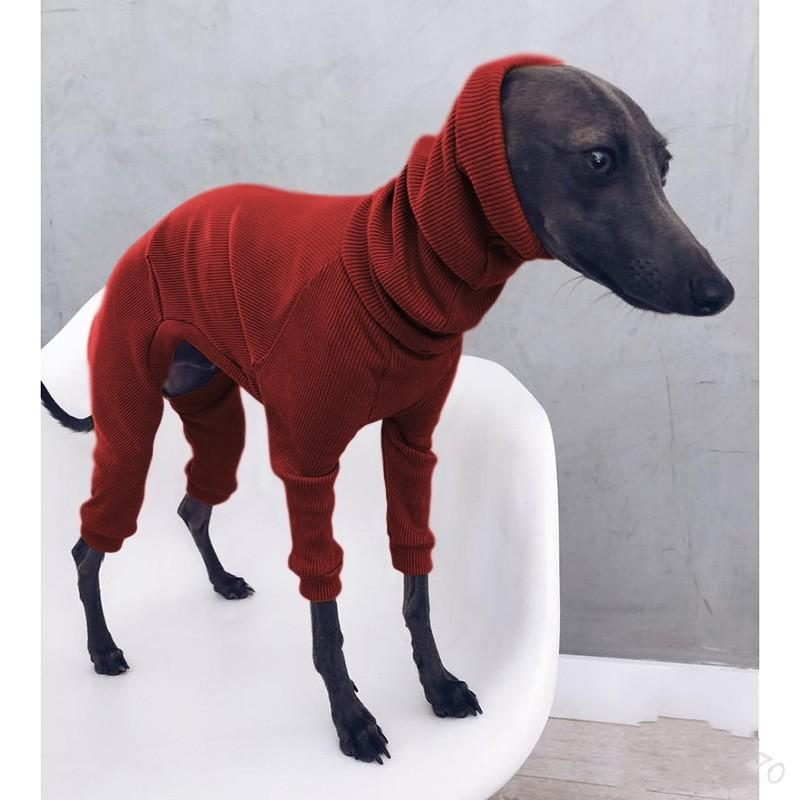 Hood Solid Color Pet Clothing Supplies Four Legs Long Bib Dogs Sweater Jacket Vest Fashion Dog Apparel Hot Sale 24lm M2