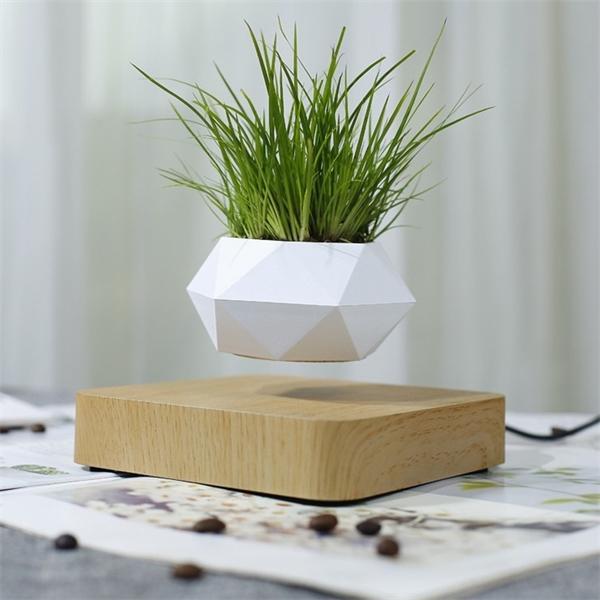 Flor de suspensão magnética Levitating Air Bonsai Pote Planta Suculenta Pátio Decoração Flor de Desktop / Verde C1111
