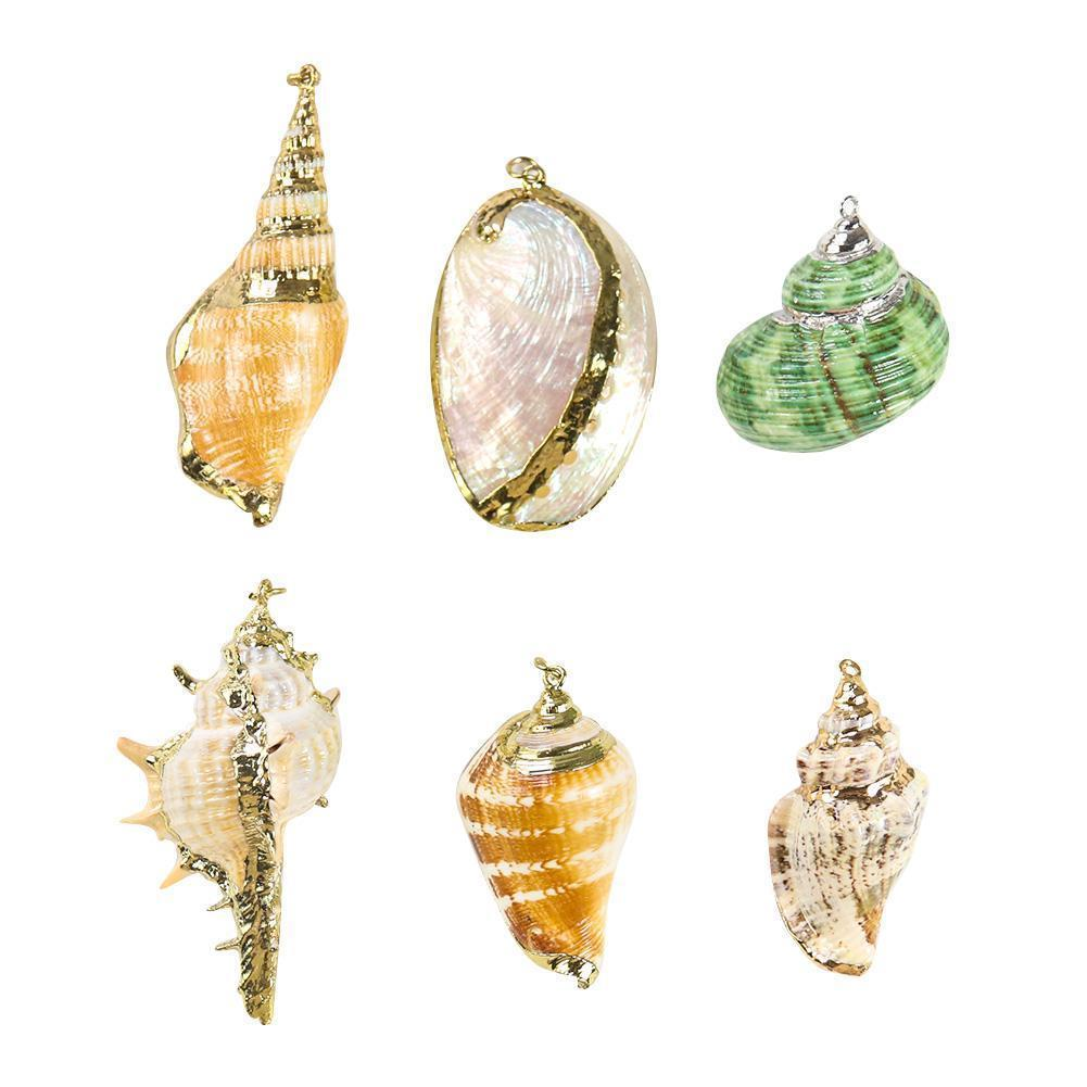 5pcs Natural Conch Seashell Ornamentos para pingente conchas encantos colar pingente diy shell para jóias fazendo acessórios h jllwyq