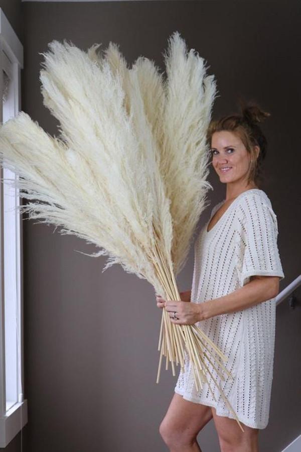 Big Pampas Erba Decor di nozze 130 cm Natural Secchi Reed Showcase Christmas Shopwindow Decor Plant Real 55 ~ 60 cm