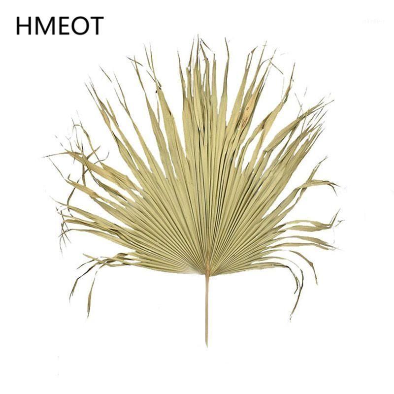 Palm Fan Yaprak Kurutulmuş Çiçek Doğal Bitkiler Bırakır Pencere Resepsiyon Parti Sanat Duvar Asılı Dekorasyon Düğün Kemer Düzenleme1