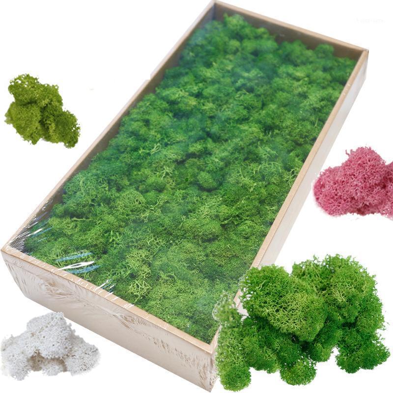 Artificielle Plante Verte Immortal Fase Fleur Mousse Herbe Haute Qualité Salon Salon Mur Mur DIY Fleur Mini Accessoires1