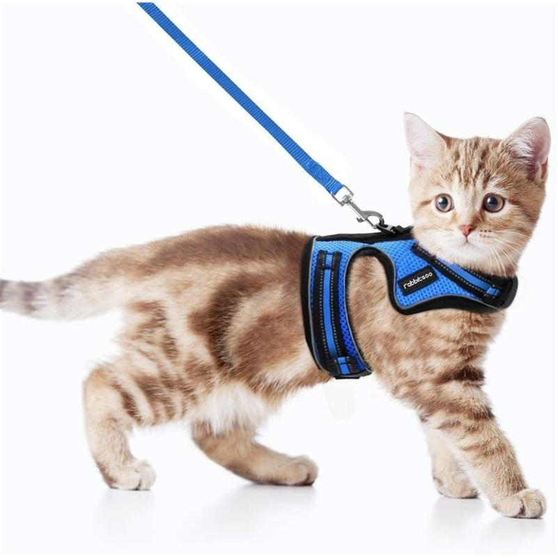 Rabbitgoo Cat жгут и поводка набор для прогулочного побега - не доказательство от задних ремня светоотражающих кошек для маленького среднего котенка LJ201225