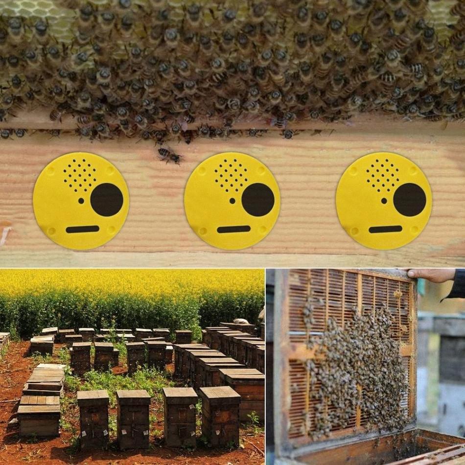 Mejores Herramientas de apicultura Precio 12 pcs / set de entrada de plástico Colmena Nuc Box Puertas apicultura Equipo YY1Z #