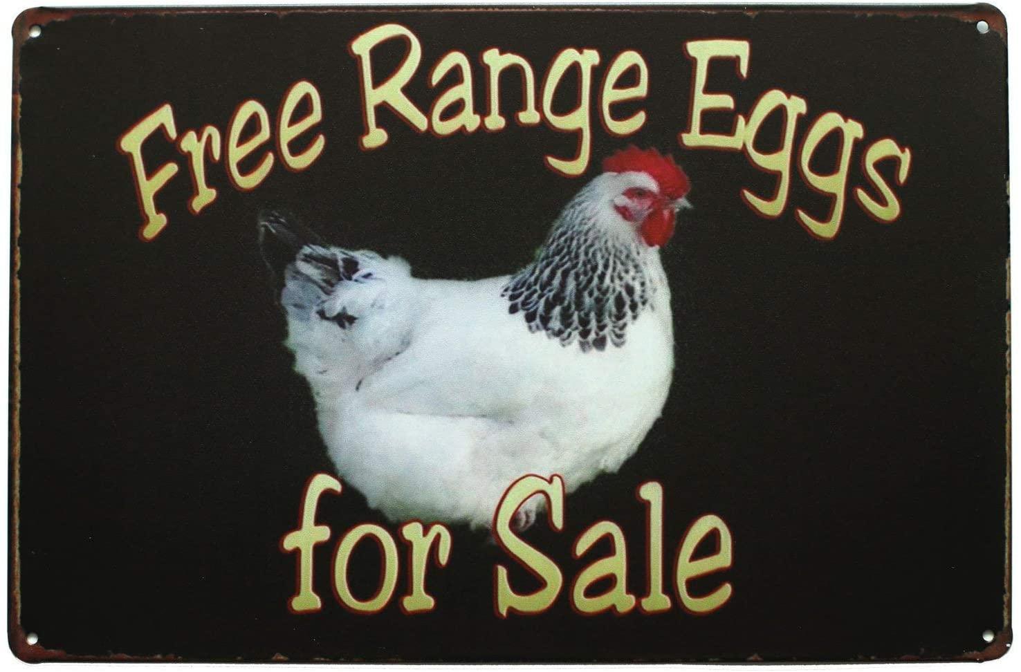 Non applicabile Metal Tar Tin Sign Decoration Iron Painting 8x12 pollici Gamma gratuita Eggs in vendita, Metallo