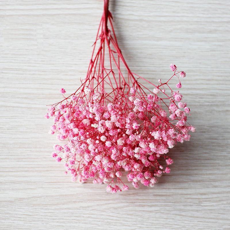 Natürliche Gypsophila Frische konservierte Blumen echt für immer Baby Atem Blumenzweig 100g konserviert trockener natürlicher echter Gypsophila-Blumenstrauß FWF3944