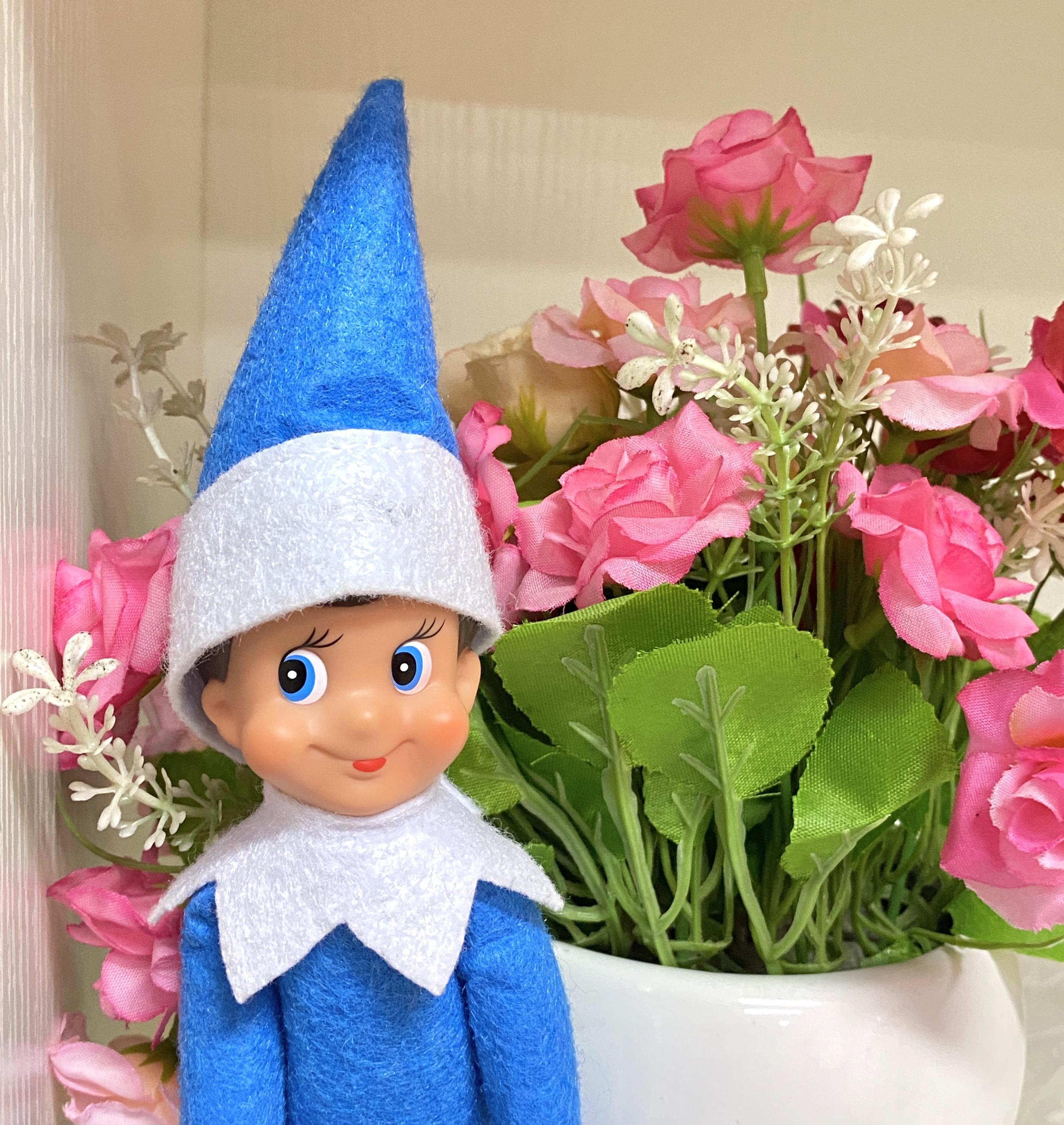 2020 Janela Guarda Natal 02 amantes boneca 08 venda quente delicada boneca 011 Christmas Elf 010