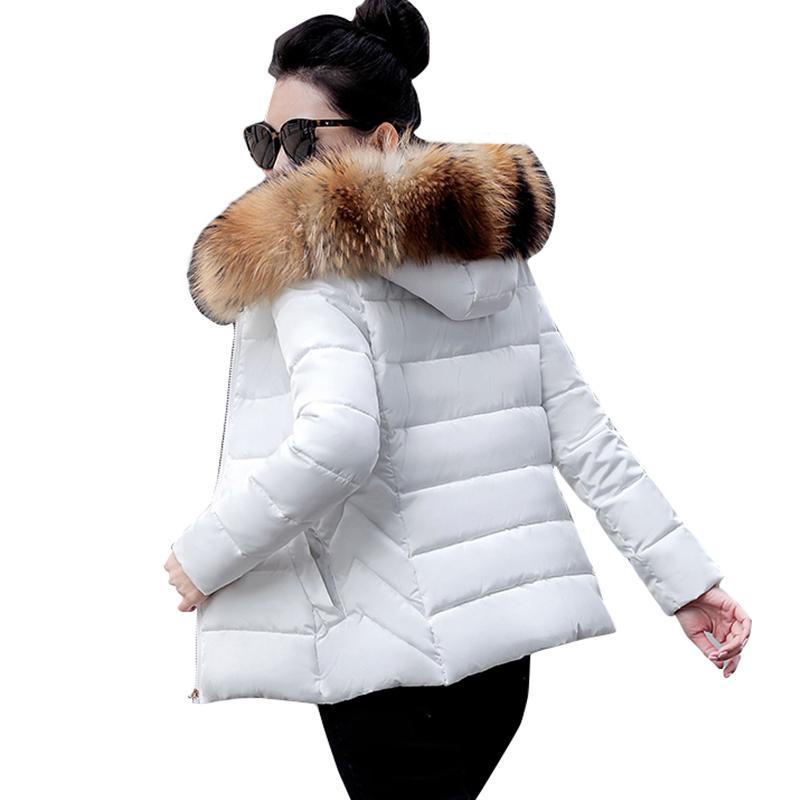 2020 New design ,Women Coat Fashion Fake Raccoon Fur Collar Winter Woman Outerwear Warm Parkas Female Down Jacket