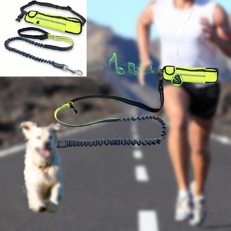 Haustier-Hundeleine-Kragen Taille wasserdichte Taschen Laufen Jogging Dog Leads Kette für große Hunde Welpen Zugseil Pet Supplies JFCZ #
