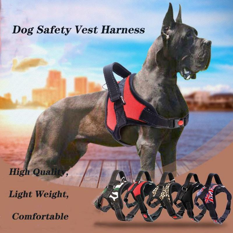 collar medium and Large 16 different styles leash chest harness for pet dog accessories