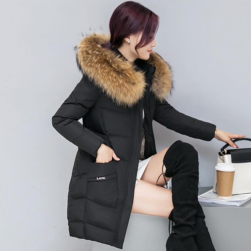 Quente Hot Winter Jacket Brasão New Zipper inverno curto Mulheres parkas quente para baixo Cotton Jacket 201110