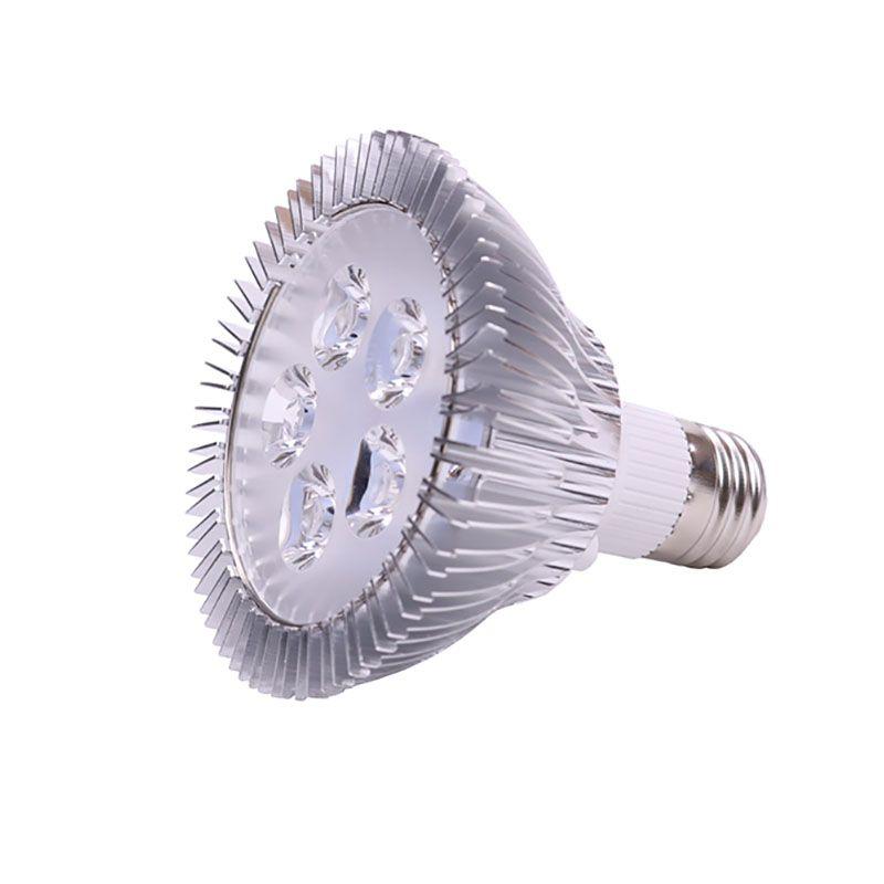 Illuminazione dell'interno LED 5W Par30 E27 lampadina del riflettore AC 110V 220V 12V DC ad alta potenza Spot Lampada fredda Bianco Rosso Blu Verde