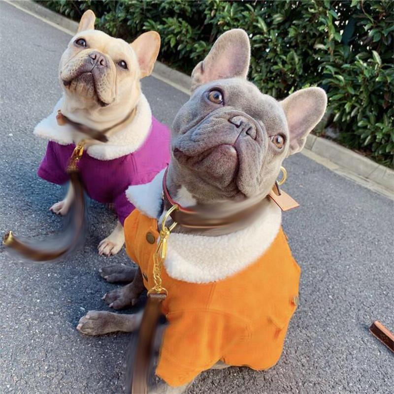 Invierno espesante diseñador mascotas chaquetas de moda carta impresa mascotas abrigos a prueba de viento al aire libre patrón cálido bulldog abrigado