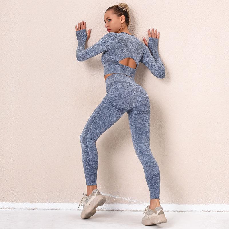 2021 Новая бесшовная Yoga Set Женщины Урожай Топ Хоуг Ругав Набор Государственные Спортивные Костюмы Тренировки Опыт Фитнес Гидратный спортсмен
