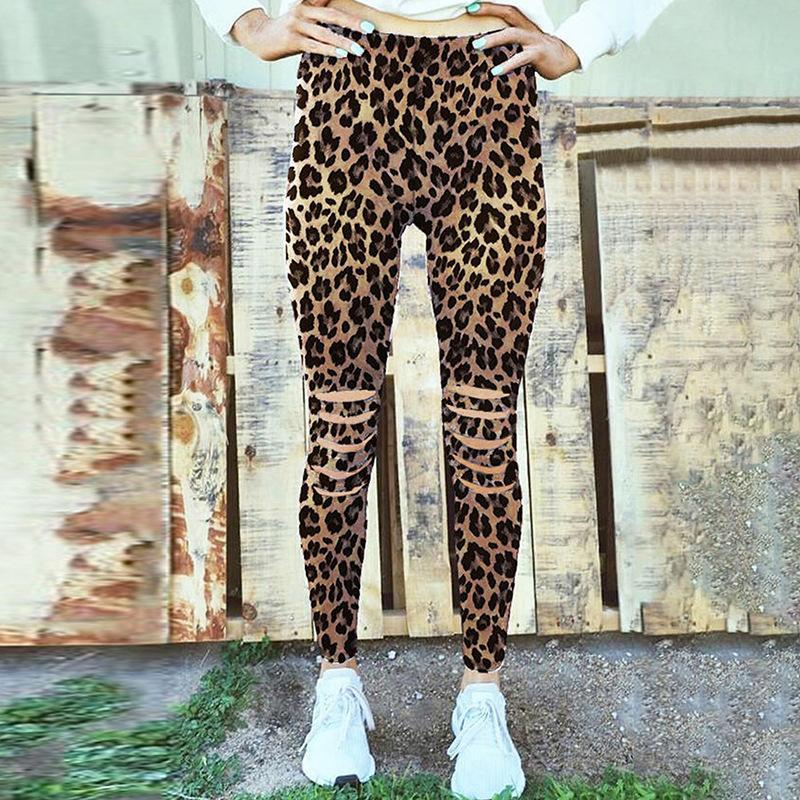 New Leopard Lace Stretch Pants Women Sexy Holes Leggings Trousers Plus Size Ins Hot Sales
