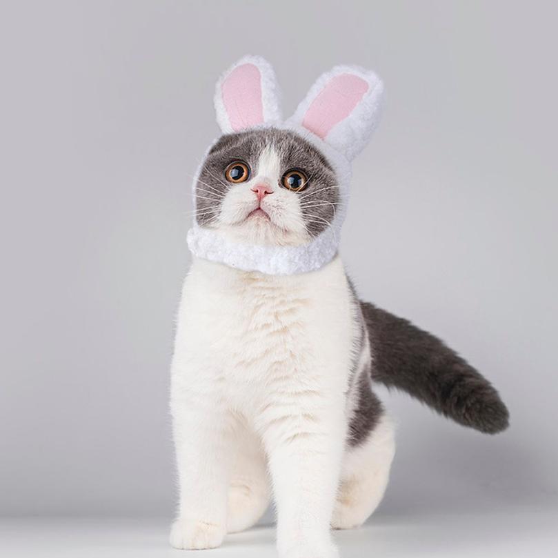 Komik Pet Kedi Yavru Cosplay Kostüm Tavşan Şapka Kap Sevimli Kedi Cadılar Bayramı Noel Giyim Şapka Küçük Köpekler Acc Sqckyi