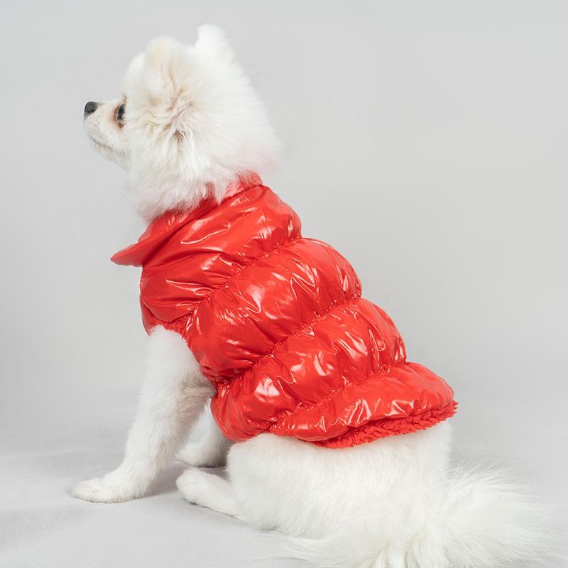 Hundebekleidung Haustier Kleidung Glänzend Lamm Down Jacket Zweibeinige französische Bulldogge Warme Mode Mantel