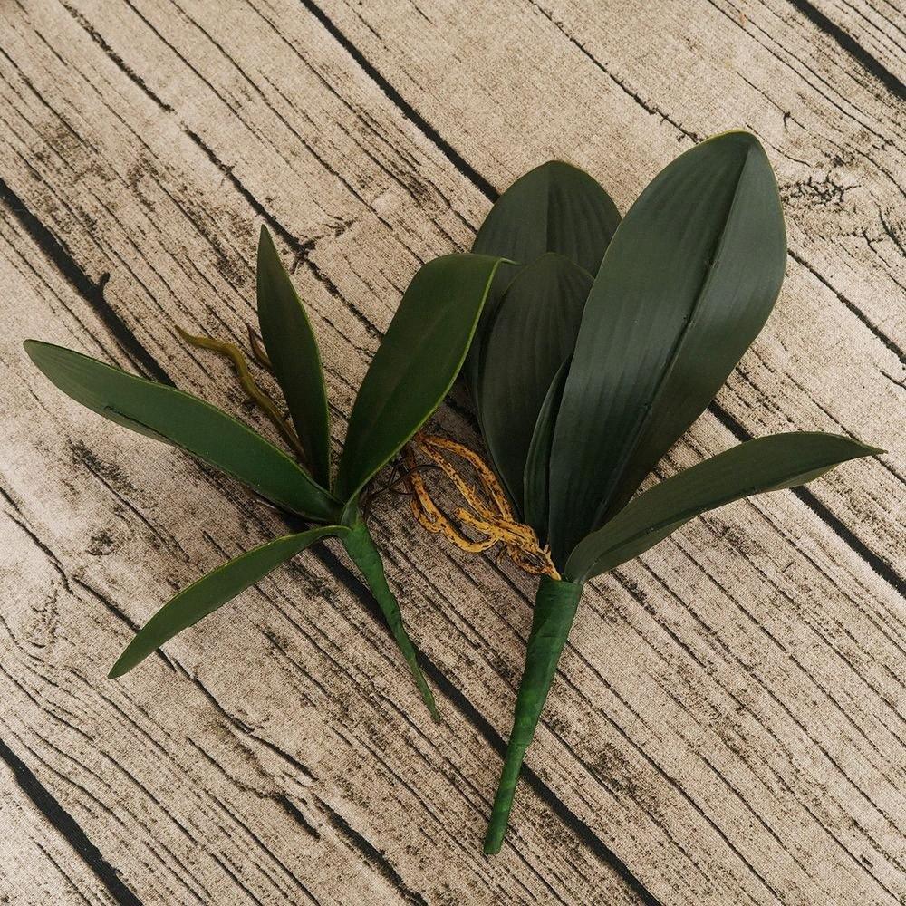 1Pcs Phalaenopsis folha artificial folha da planta flores decorativas flores material de folhas auxiliares decoração da orquídea BY6c #