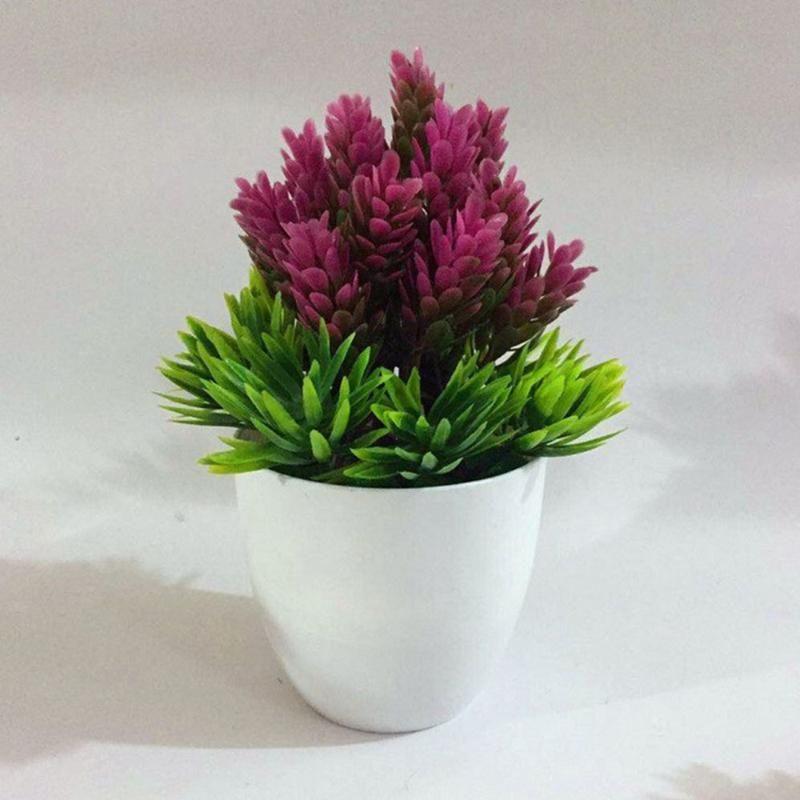 Bonsai Tohum Ağacı Bitki Saksı Çiçek Dekorasyon Arıtma Ev Dekorasyon