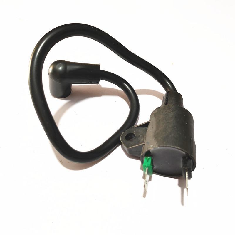 Jeneratör TG950 650 ET950 ET650 ateşleme bobini 1000 W 950 W 1KW 2 zamanlı 1E45 Jeneratör yedek parça W