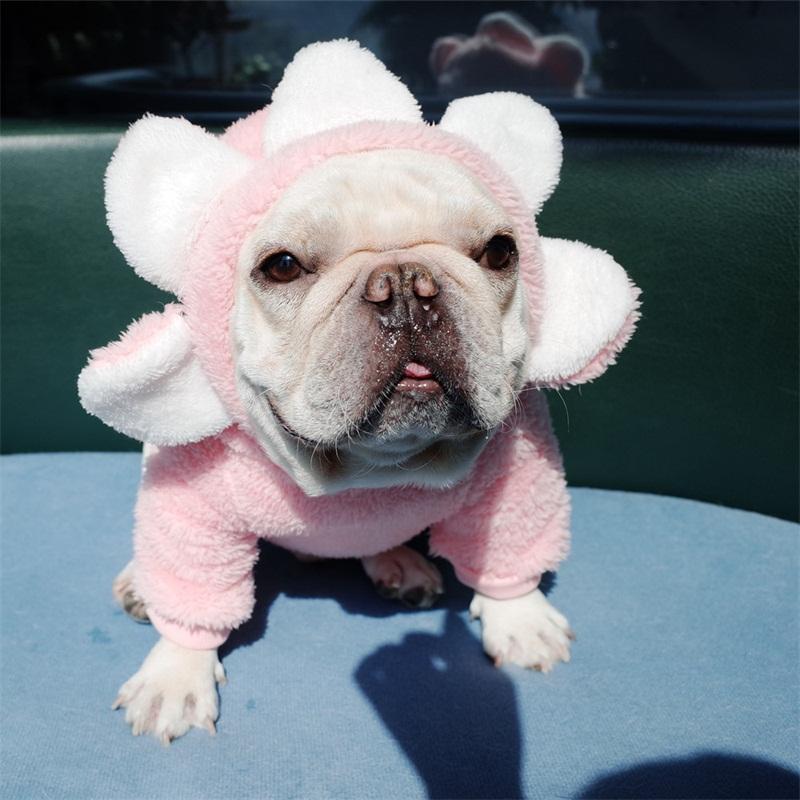 الشتاء عباد الشمس كلب سترة هوديس رشاقته نقية اللون puggy القط أبلى الأزياء الحيوانات الأليفة الملابس الدافئة مريحة 22CG E1